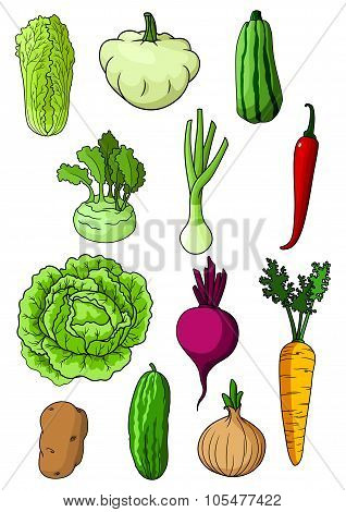 Fresh isolated organic farm vegetables