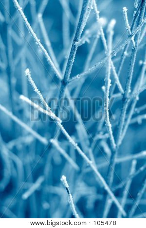 Blue Frost Texture