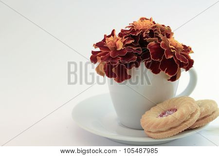 Marigold Flowers In A Tea Cup