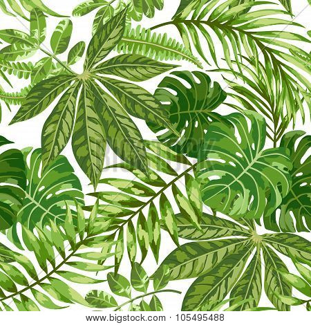 Seamless exotic pattern with tropical leaves on a white background.