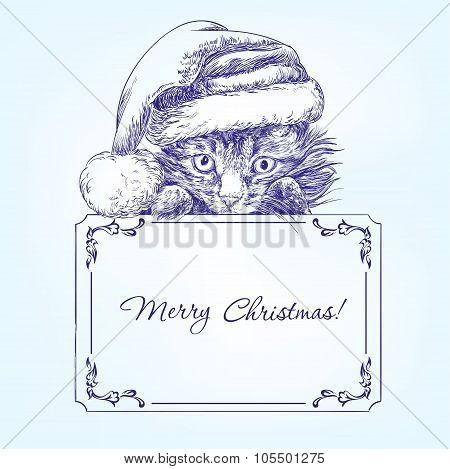 Christmas kitten in Santa stocking hat hand drawn vector llustration  sketch