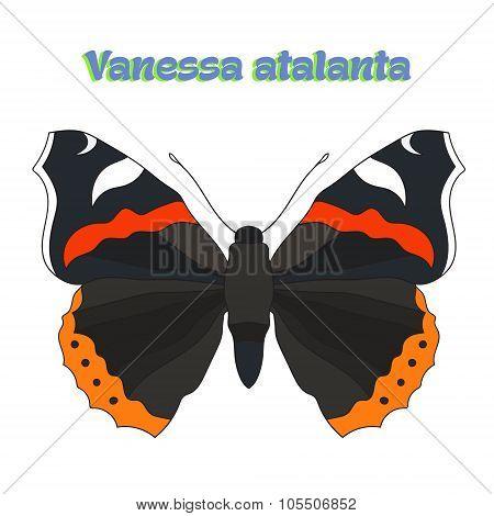 Butterfly vanessa atalanta vector illustration