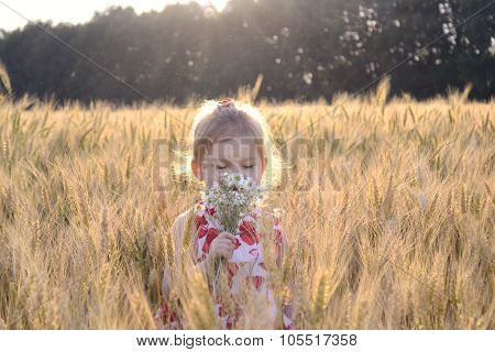 Little girl in field on a sunny day smell flowers. Lens flare