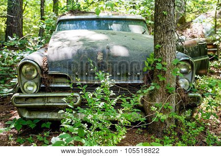 Old Ford Lincoln Against Tree