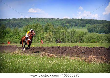 Young Horseman