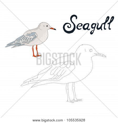 Educational game connect dots draw seagull bird
