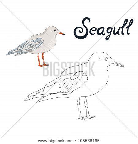 Educational game coloring book seagull bird vector