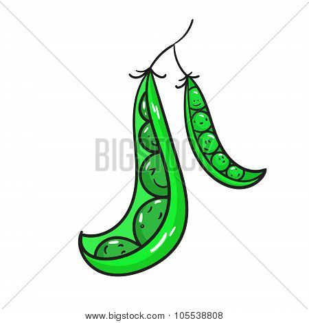 Vegetable peas vector illustration