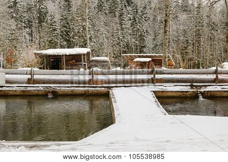 KREUTH, GERMANY - JANUARY 2015 : Snowy view of fish pond at Herzogliche Fischzucht in Wildbad Kreuth during the winter in Kreuth, Germany on January 4, 2015.