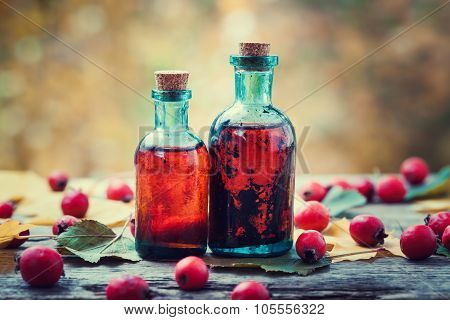 Tincture Bottles Of Hawthorn Berries And Red Thorn Apples On Wooden Table With Autumn Maple Leaves.