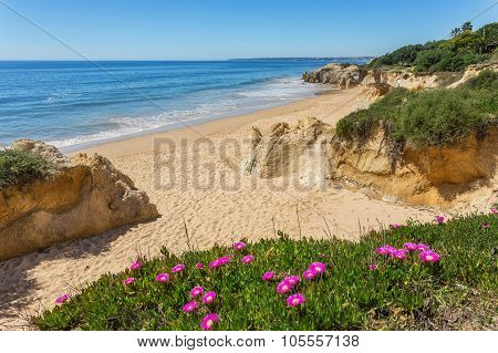 Delightful Seascape Coast Spring Albufeira. Portugal For Tourists.