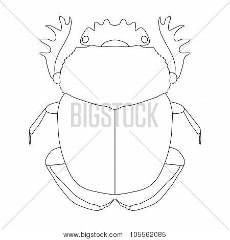 scarab. Geotrupidae dor-beetle . Sketch of dor-beetle. dor-beetle scarab isolated on white backgroun