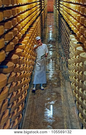 Gruyere Cheese Factory Worker In A Cellar In A Cellar