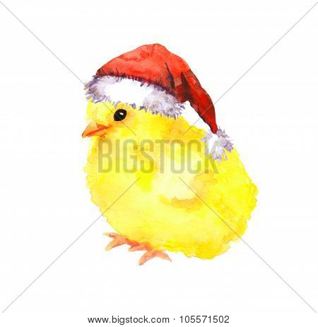 New year baby chicken in red santa's hat. Watercolour bird
