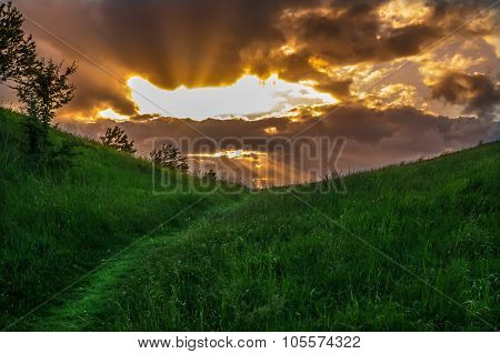 Grass Path