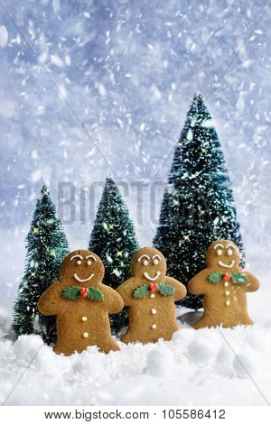 Gingerbread cookies at Christmas in the snow