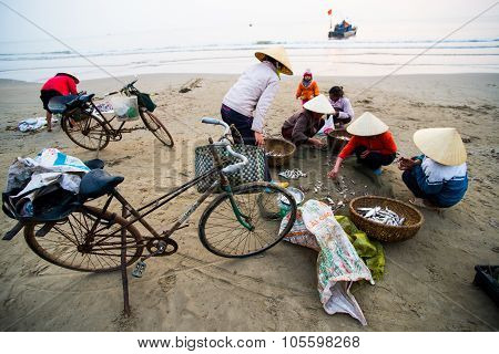 Small fish market on beach in sunrise in Thanh Hoa, Vietnam