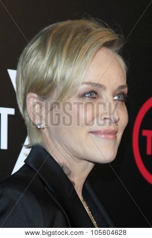 LOS ANGELES - OCT 20:  Sharon Stone at the TNT's