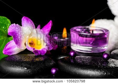 Beautiful Spa Setting Of Purple Orchid Dendrobium With Dew, Black Zen Stone, Green Leaf, Beads, Towe