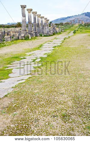 Volubilis In Morocco Africa The Old  Street