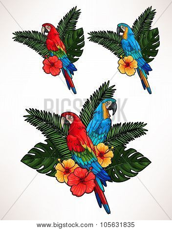 Macaw and palm leaves