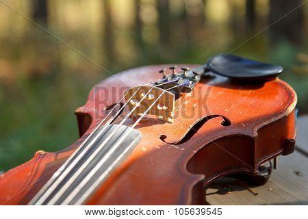 Violin in sun lights