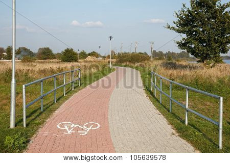 bricks paved pathway