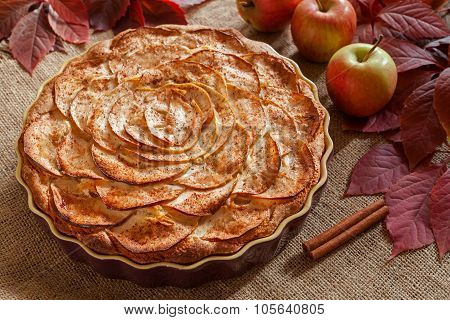 Homemade gourmet apple pie baked sweet traditional dessert with cinnamon and apples on vintage backg