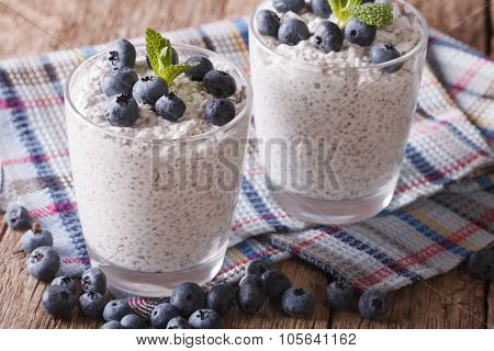 Healthy Dessert With Chia Seeds And Blueberries Closeup. Horizontal