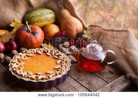 Traditional homemade pumpkin tart pie healthy sweet dessert recipe with tea. Halloween or thanksgivi