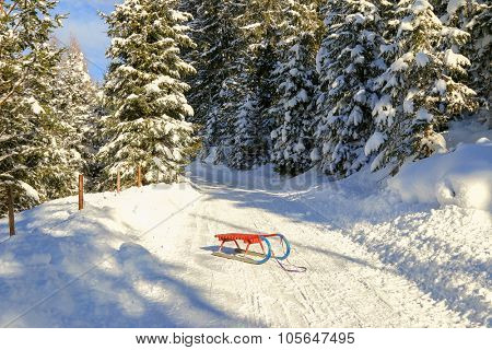 An old-styled Rodel (Toboggan) in red and blue on snowy path in the forest in Austria