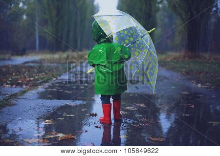 Baby Walking In Autumn Rainy Park
