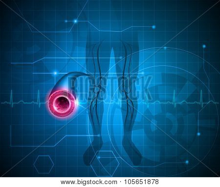 Healthy Leg Artery Background