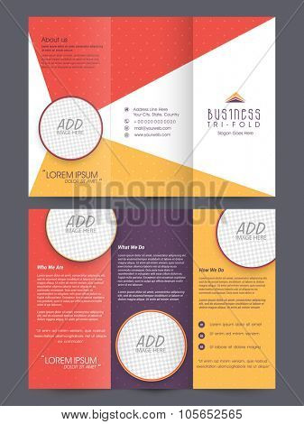 Colorful stylish front and back presentation of professional Business Trifold, Flyer, Banner or Template with space for your images.