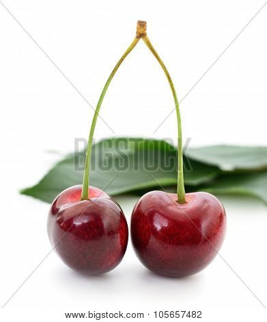 Cherries And Leaves.