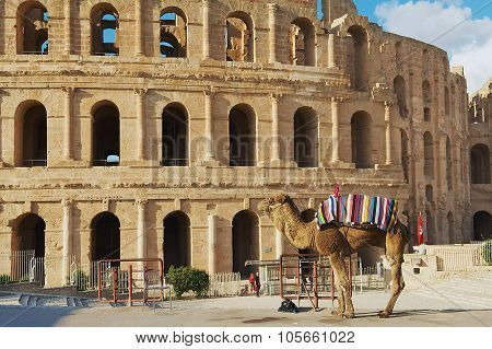 View to the entrance to the El Djem amphitheater in El Djem, Tunisia.