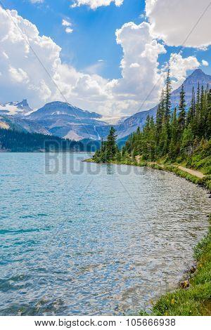 Majestic mountain lake in Canada. Bow Lake view in Jasper, Alberta, Canada. Rocky Mountains.