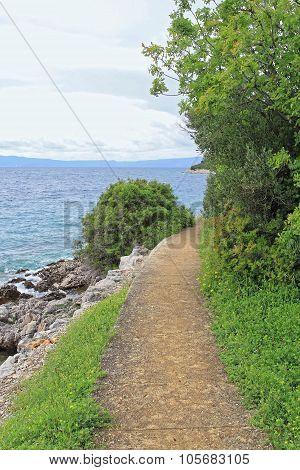 Island Hiking Trail