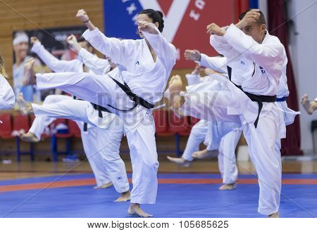 Demonstration  Of Japanese Traditional Martial Arts