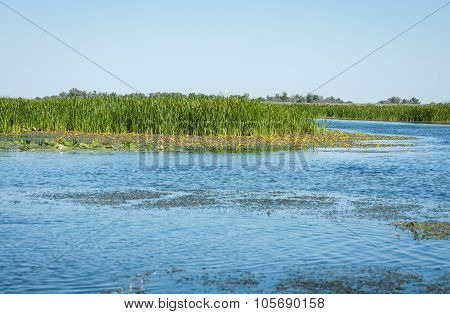 Landscape Of Central Russia, Volga Delta
