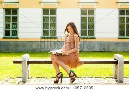 The Beautiful Pregnant Girl