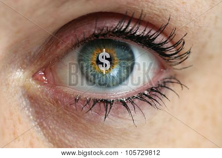 Eye With Dollar Sign In The Pupil Concept