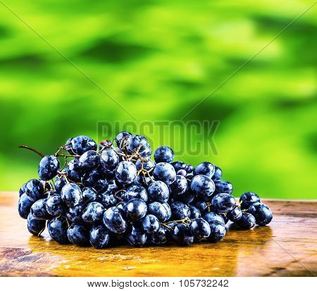 Grapes on a old wooden table. Bunch of blue grapes lying on a wooden board