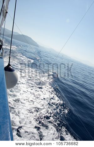Seascape with water trail from boat with white ball fender