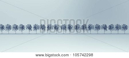X-ray Image Of Tree's Isolated