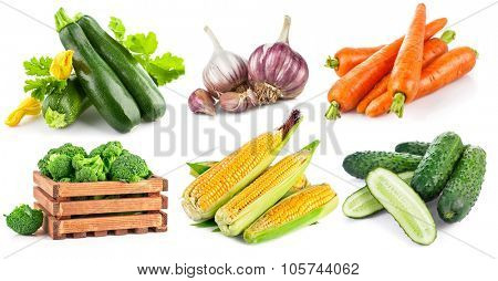 Set fresh vegetables with green leaf. Isolated on white background. Illustration