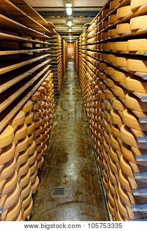 Gruyere Cheese Maturing In A Cellar Of Maison Du Gruyere Dairy