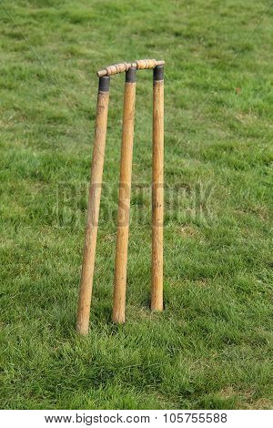 Cricket Stumps.