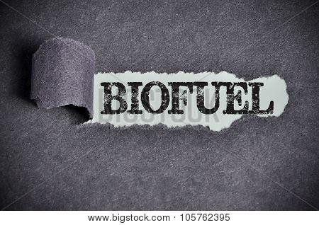 Biofuel Word Under Torn Black Sugar Paper