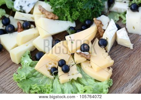 Various Types Of Gourmet Cheeses